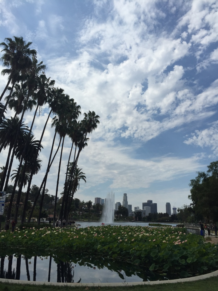 Echo Park Lake in all it's glory. Downtown in the background. #NoFilter.