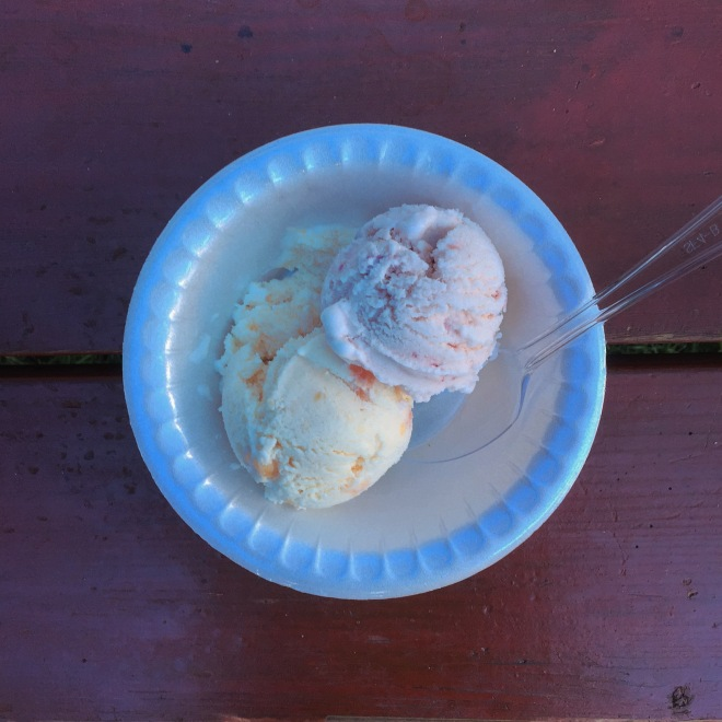 Cousin Barbara's Homemade Ice Cream. Peach on left. Strawberry on right.
