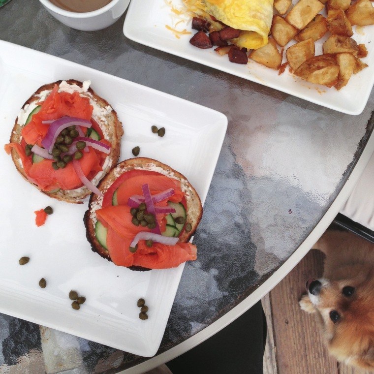 Lox Bagel at The Press just before getting to Half Moon Bay. Can you spot Boo? Professional photobombed he is.
