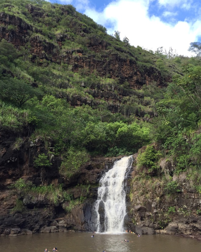 Waimea Falls, it's a nice 1 mile stroll through the botanical gardens to the waterfall. And when you reach the waterfall you get to jump in and swim.